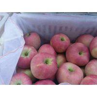 红星苹果现在多少钱一斤 哪里红星苹果颜色好价格低