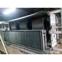 供应鑫鼎洗涤烘干设备16X1.0铜串片换热器//表冷器