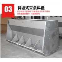【推荐】养猪用料槽用不锈钢双面料槽,寿命长,无死角设计更省料!