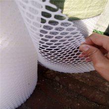 小鸡脚踩网 安平塑料平网 塑料养殖网