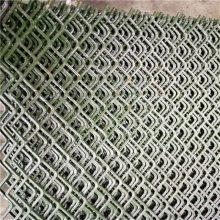 钢板网围网 六角钢板网 菱型金属网