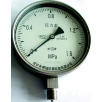 YTH-100,全不锈钢防腐压力表,北京布莱迪BLD,上海仪器仪表