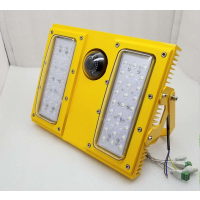 BFC8118/LED防爆摄像泛光灯