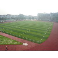 塑料制草 幼儿园保护孩子玩乐地面人造休闲草 山东足球场适用仿真草草坪