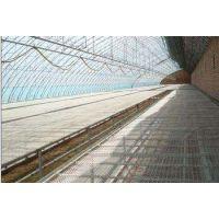 温室热镀锌苗床网最新款式-质量好价格合理