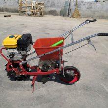 手推式两行玉米播种机 柴油玉米播种机 汽油柴油耕耘播施肥机