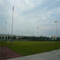 校园足球场适合几米灯杆 佛山高杆灯可定做 柏克照明灯具包安装