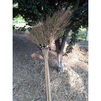 金竹牌大竹扫帚,柄长轻便高效,牢固赖用,超值无比,实惠无比。是你从来没用过的好扫帚。