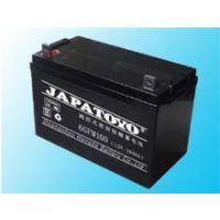 海南东洋铅酸蓄电池报价12V65AH参数规格