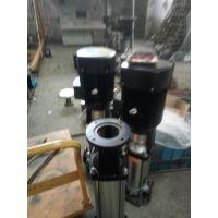 多级离心泵型号 不锈钢 QDL4-60 1.1KW 众度泵业