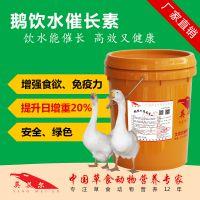 肉鹅催肥剂 英美尔鹅催肥剂有哪些