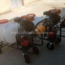 手推大容量喷雾器 启航自走式打药机 高射程农田喷药车厂家