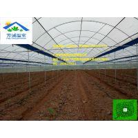 工程创新,新型大棚,广东温室,开天窗连栋棚
