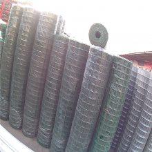 圈山围网 景区围栏 浸塑电焊网荷兰网