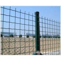 厂销浸塑荷兰网圈地围栏网喷塑电焊网铁丝焊接网