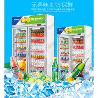 厂家直销供应全国2018新款两门饮料冷藏展示柜鲜花保鲜柜