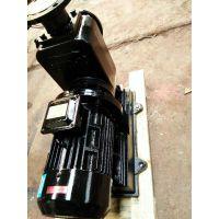 持久耐力自动排污泵300WQ500-15-45KW厂家排污泵直销300WQ800-12-45KW