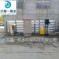厂家直销 工业纯水纯化纯净水水处理设备净水器
