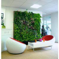 厦门酒吧酒店植物墙仿真绿墙绿色植物背景墙室内景观工程施工