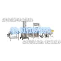 鑫丰仿手工豆皮机 进口不锈钢材质 全自动化 业内技术一流 干净卫生