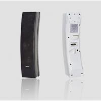 DSPPA D6066W/B 壁挂式阵列 全频会议音箱