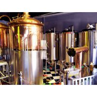 北京精酿啤酒设备-金汉森啤酒设备厂