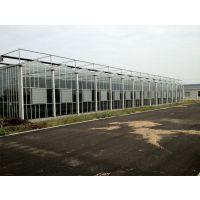 上海钢构骨架玻璃智能温室大棚、顶部圆丝网遮阳工程承建厂家