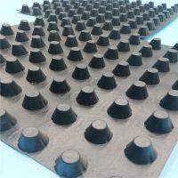北京直销厂家发货 屋顶花园塑料排水板凹凸型 H2.0车库顶板绿化蓄水板