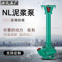 立式污水泥浆泵 NL系列鱼塘清淤机 厂家直销单极单吸离心泵