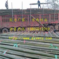 大量供应绑扶枸杞树苗用的绑竹杆