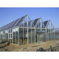 浙江丽水智能玻璃温室大棚厂家 建造公司性价比报价