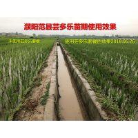 水稻抗病增产高效套餐 芸多乐增产套餐