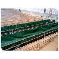 供应鱼场专用帆布水池市场无气味帆布鱼池山区活动鱼池水池加工三防产业用布农业