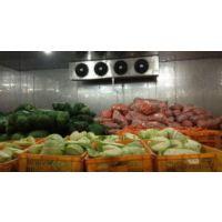 南宁市土豆保鲜库厂家建设--安徽雪坊制冷设备