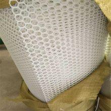 透明色塑料平网 黑色塑料网 出售小鹅育雏网床