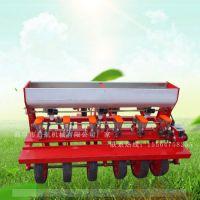 安康市操作简单型蔬菜播种机 启航牌小颗粒花籽精播机 六行油菜播种机厂家