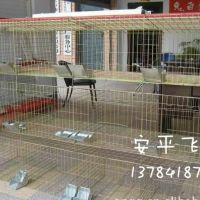 加粗兔子笼 镀锌兔笼 兔子养殖笼具 飞创丝网批发全国13383380113李