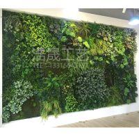 东莞浩晟仿真植物墙 高档塑料材质仿真植物绿植墙 可来图定制 免费安装