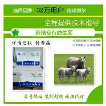 绵羊为什么会剩料治疗羊剩料三天见效