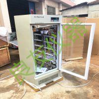 供应金坛良友250D智能光照培养箱 250L光照培养箱经济型 恒温光照培养箱