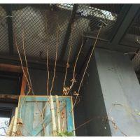 上海餐厅吊顶菱形网吊顶菱形网格铁丝网黑色装饰