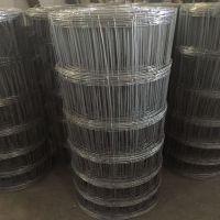 新疆欧利特供应优质镀锌草原隔离网 牧场牛栏网 150米一卷