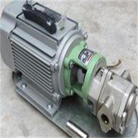 吐鲁番齿轮泵手提式齿轮泵 WCB齿轮泵WCB-30手提式齿轮泵性价比