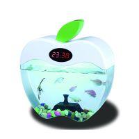 外贸最新爆款亚克力创意苹果桌面生态鱼缸