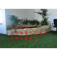 塑料假草皮墙绿植装饰绿色地毯仿真草坪人造草坪阳台户外植物