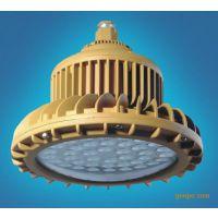 新黎明LED防爆灯BZD210-20-100W/BAD84防爆免维护LED照明灯(ⅡC)-I型 30