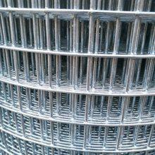 镀锌电焊网供应商 钢丝网片 肉狗养殖网