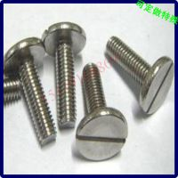 不锈钢大平头一字槽螺丝钉 江门螺丝厂 生产定做