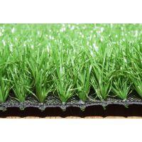 泰安人造草坪,泰安人造草坪价格,泰安人工草坪,孟鑫人造草坪