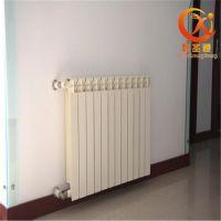 全球外贸压铸铝暖气片 家用压铸铝暖气片取暖专用
